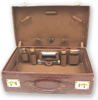 Open reptile skin travelling case with brass locks